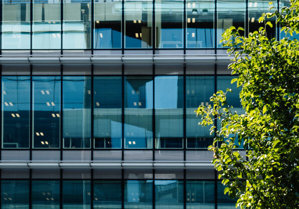 glass-facade-office-building-with-tree-outside_89411-89